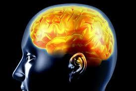PSIHOLOGIJA SOPSTVENOG MOZGA